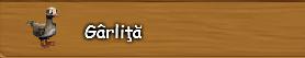 1. Garlita.png