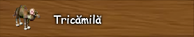 2. Tricamila.png