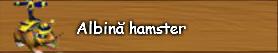 3. Albina hamster.png