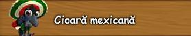 3. Cioara mexicana.png