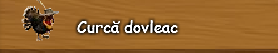 3. Curca dovleac.png