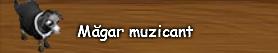 4. Magar muzicant.png