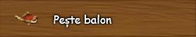 4. Peste balon.png