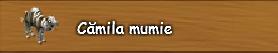 5. Camila mumie.png