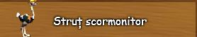 5. Strut scormonitor.png