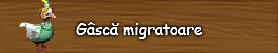 6. Gasca migratoare.png