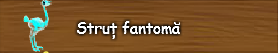 6. Strut fantoma.png