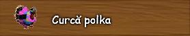 7. Curca polka.png