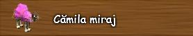 8. Camila miraj.png