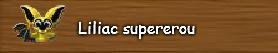 8. Liliac supererou.png