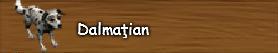 a. Dalmatian.png