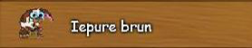 a. Iepure brun.png