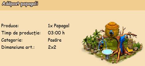 Adapost papagali.png