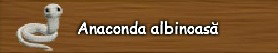 Anaconda-albinoasa.png