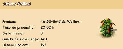 Arbore Wollemi.png