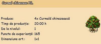 Curmal-chinezesc-XL.png