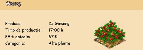 Ginseng.png