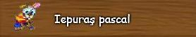 h. Iepuras pascal.png