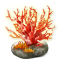 incubator_coral_firecoral-big.png