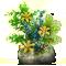 incubator_flora_4-big.png