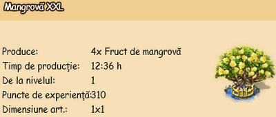 Mangrova-XXL.png