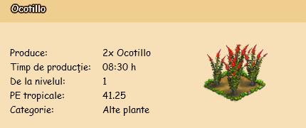 Ocotillo.png
