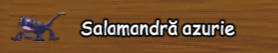 Salamandra azurie.png