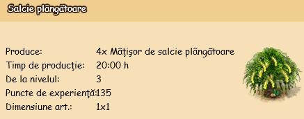 Salcie-plangatoare.png