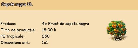Sapote negru XL.png