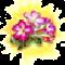 Trandafirul de desert.png